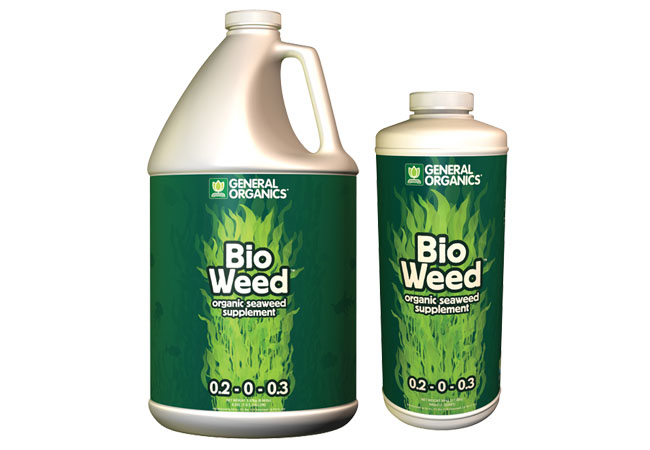 GH BioWeed 6 Gallon