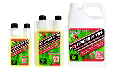 NO SPIDER MITES CONC 16OZ (12/CS) (MAKES 5 GAL)