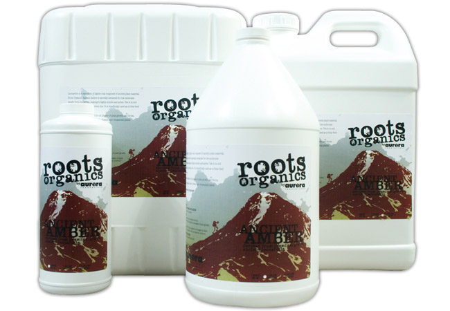 ROOTS ORGANICS ANCIENT AMBER QUART