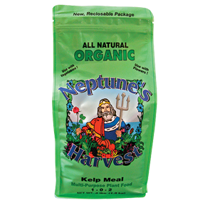 Neptunes Harvest Kelp Meal 50 lb Bag