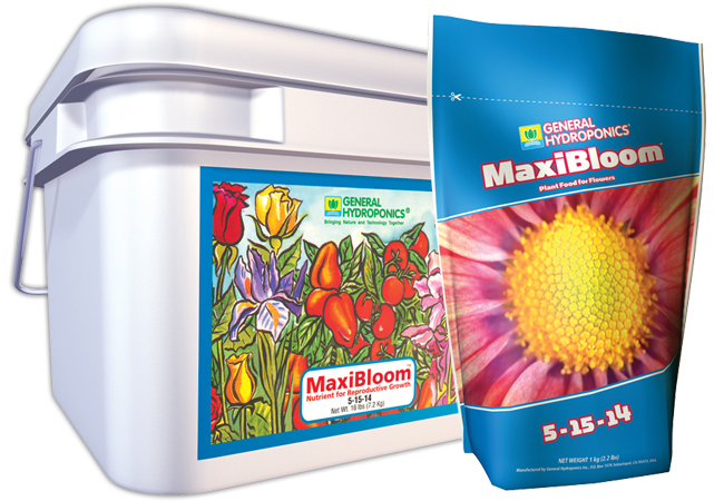 MAXIBLOOM 2.2LBS (12/CASE)