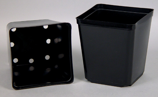 "SQUARE PLASTIC POTS - ECONOMY BLACK 5.5"" X 5.5"" X 6"" (CASE of 200)"
