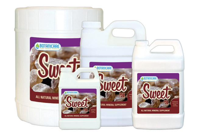 SWEET CARBO RAW GALLON 4/CS
