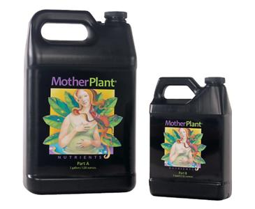 MOTHER PLANT A GALLON (4/CASE)