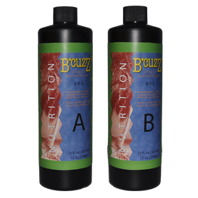 BCuzz Coco Nutrition A 1 Liter (12/Cs)