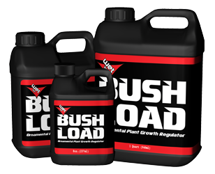 GH Bush Load Quart (6/Cs)