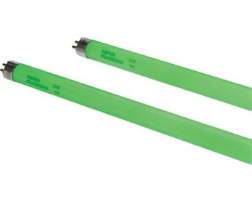 2 FT GREEN T5 HO Lamp 24W 2' (25/Case)