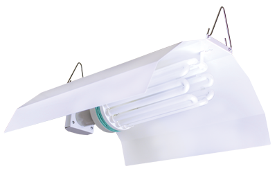 Sun System White Wing CFL (32/Plt)