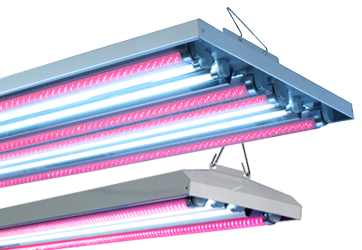 AgroLED T5/LED HO Combination Fixture 44 - 4 ft 4 Lamp