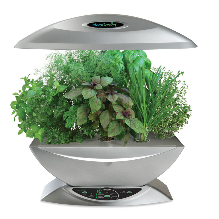 Countertop Herb Garden Kit : ... AeroGarden 7 Silver w/Gourmet Herb & Grow Anything Kit (AERO500S