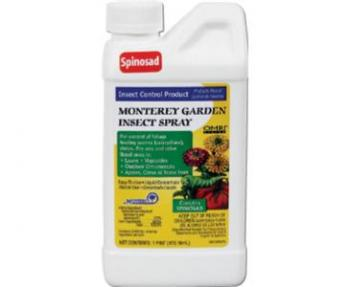 GARDEN INSECT SPRAY W/ SPINOSAD PINT 12/CS