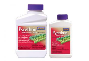 Pyrethrin Garden Insect Spray Concentrate 8 oz.