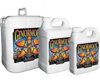 GINORMOUS GALLONS 4/CS