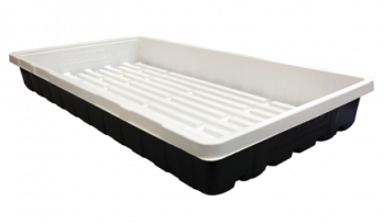 Mondi Black and White Premium 10 x 20 Propagation Tray (50/Cs)