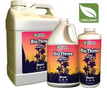 BIOTHRIVE BLOOM QUART (12/CASE)