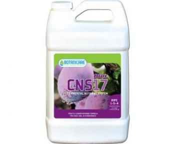CNS17 RIPE QUART 12/CS