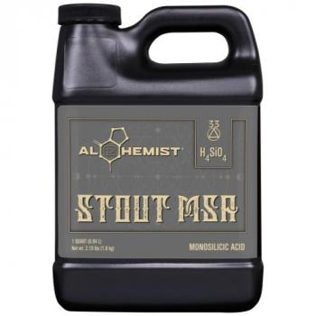 Alchemist Stout MSA Quart (12/Cs)