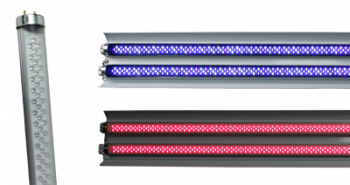 AgroLED T8 LED Tube - Red