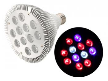 AgroLED 12w Lamp - Full Spectrum
