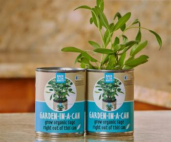 Back to the Roots     Garden in a Can Sage