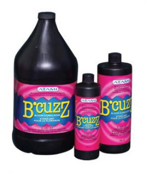 B'Cuzz Bloom, 12 oz