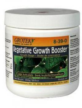 Grotek Growth Booster, 20 g