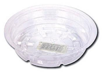 "CLEAR PLASTIC SAUCERS 12"" (CASE OF 25) AVAILABLE IN CASE QUANTITIES ONLY"