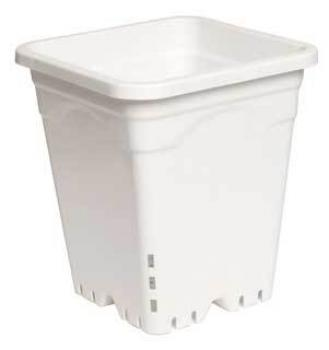 "9"" x 9"" Square White Pot, 10"" Tall, case of 24"