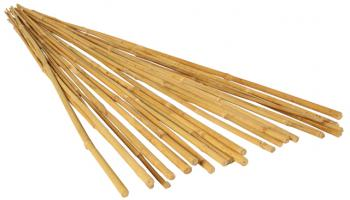 6' Bamboo Stakes, Natural, pack of 25
