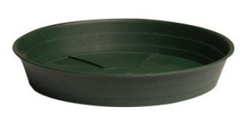 "Green Premium Saucer 12"", pack of 10"