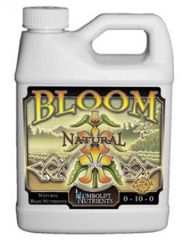 Bloom Natural 16 oz.