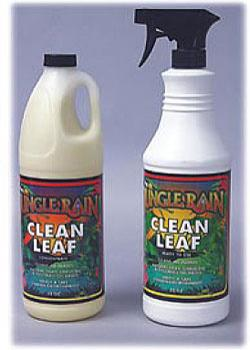 JUNGLE RAIN CLEAN LEAF - CONCENTRATE 32OZ (12/CASE)