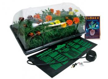"Hot House w/ Heat Mat, tray, 72 cell pack, 6"" dome (6/cs)"