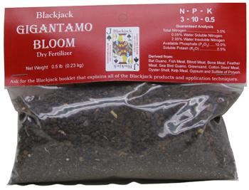 Gigantamo Bloom. 1/2 lb