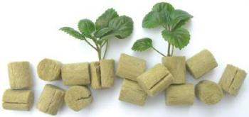 "GRODAN� STONEWOOL MACRO PLUGS - 1.5"" ROUND - SLIT FOR CUTTINGS (2,000 PLUGS/CASE) (12 CASES/PALLET)"