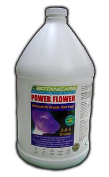 Power Flower. 1 Gallon