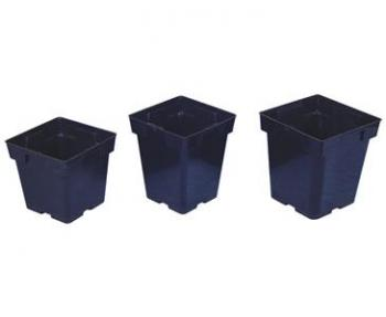 "SQUARE PLASTIC POTS - JUMBO SENIOR 5"" X 5"" X 6.5"" BLACK (200/CASE)"