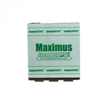 "SteadyGrow 8"" Maximus Cube (Sold in cases of 6 pcs)"