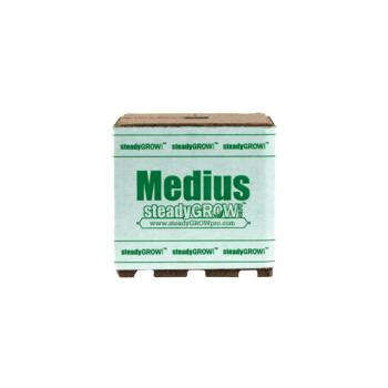 "SteadyGrow 6"" Medius Cube (Sold in cases of 8 pcs)"