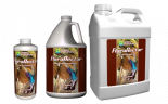 FLORA NECTAR COCONUT 6 GALLON