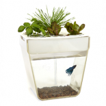 "748300 Back to the Roots - Aquafarm 3 Gallon Fish Tank, 12"" X 8"" X 12"""