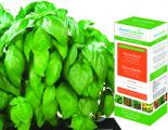 Pesto Basil Seed Kit