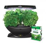 hf-AERO605 AeroGarden 7 LED with Gourmet Herb Seed Kit