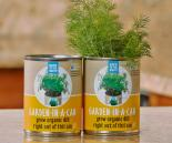 Back to the Roots     Garden in a Can, Dill