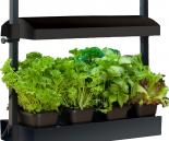 SunBlaster     Micro Grow Light Garden, Black