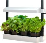 hf-SL1600199 SunBlaster     Micro Grow Light Garden, White