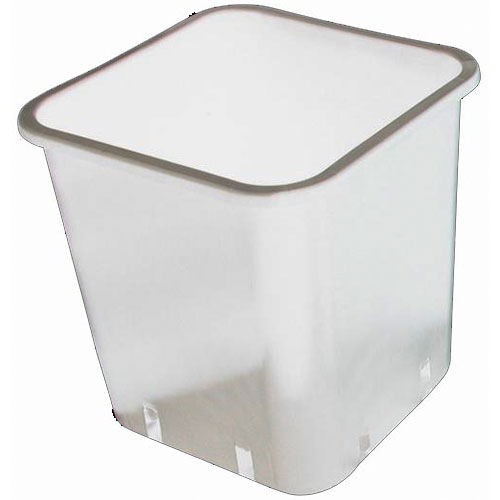 1.5 Gallon White Square Pot