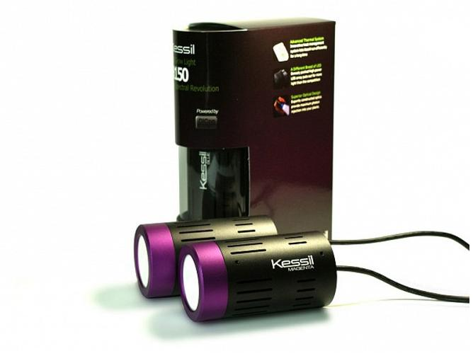 Kessil 150 LED Lights, Purple