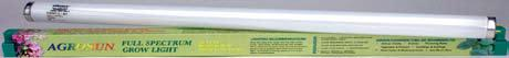 "24"" Agrosun 20W Fluorescent Tube Case of 6 (T12)"