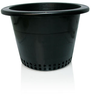 "10"" Round Mesh Bottom Pots (w/lip)"